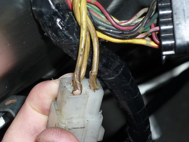 Yamaha R Rectifier Plug
